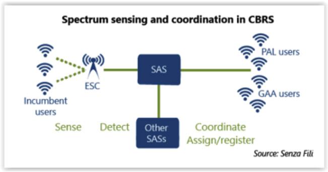 Spectrum Sensing and Coordination in CBRS